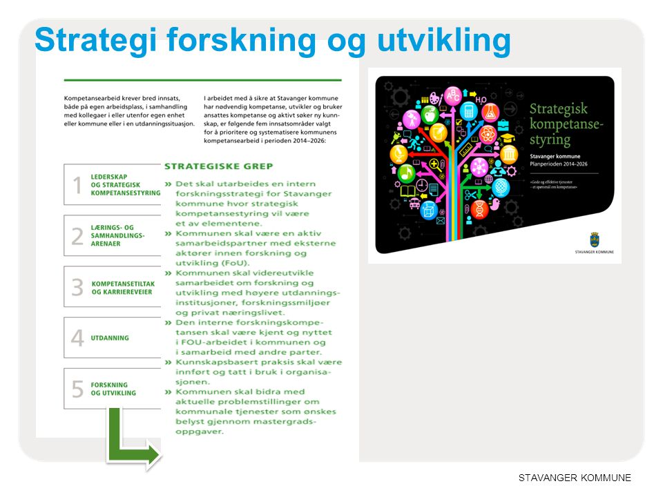 Strategi forskning og utvikling