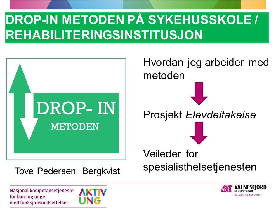 Drop-In metoden på sykehusskole / rehabiliteringsinstitusjon