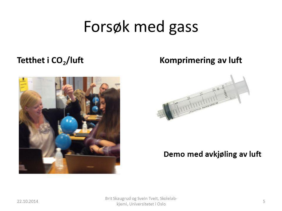 Brit Skaugrud og Svein Tveit, Skolelab-kjemi, Universitetet i Oslo