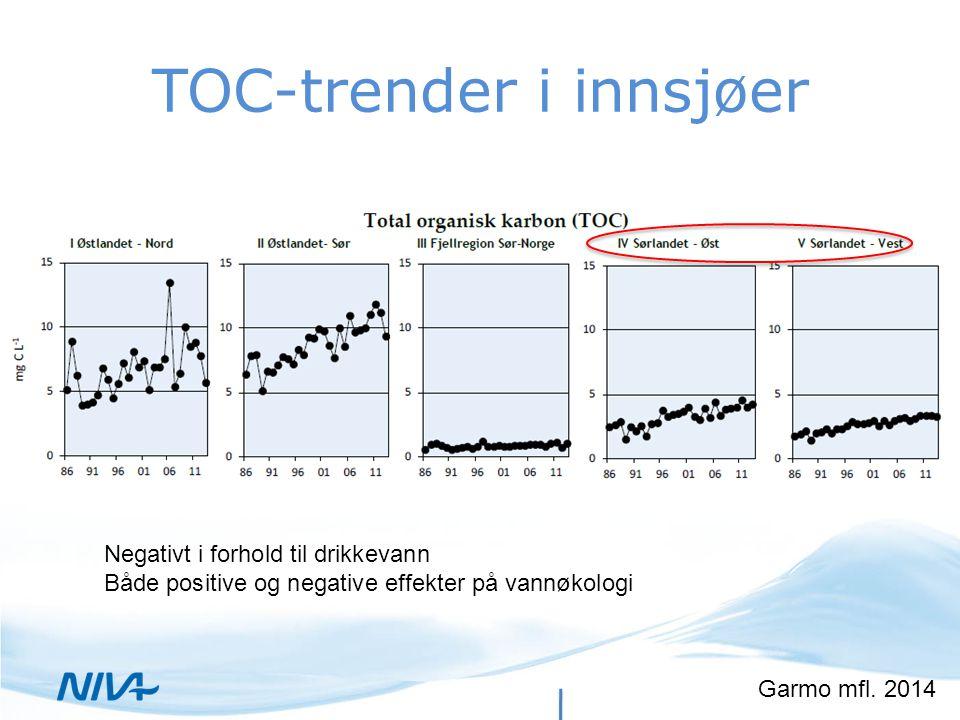 TOC-trender i innsjøer