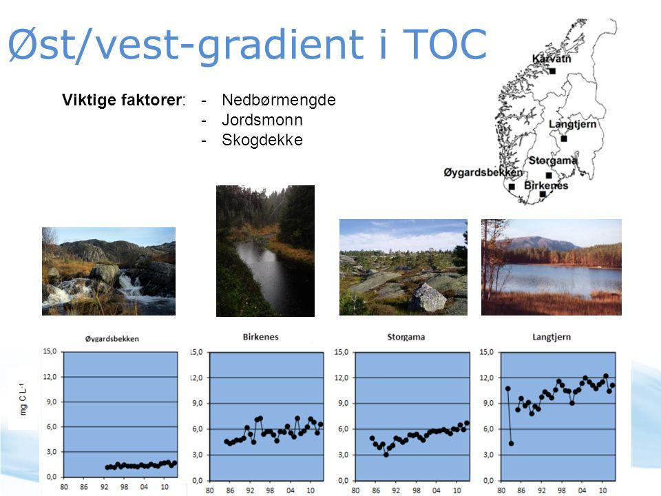 Øst/vest-gradient i TOC