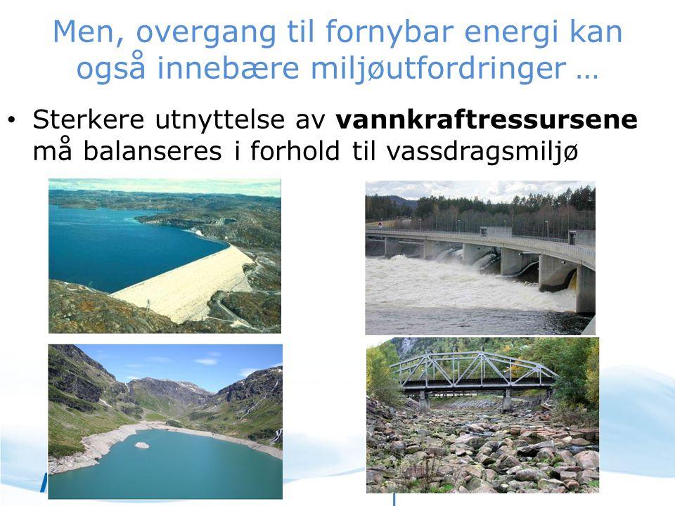 Men, overgang til fornybar energi kan også innebære miljøutfordringer …