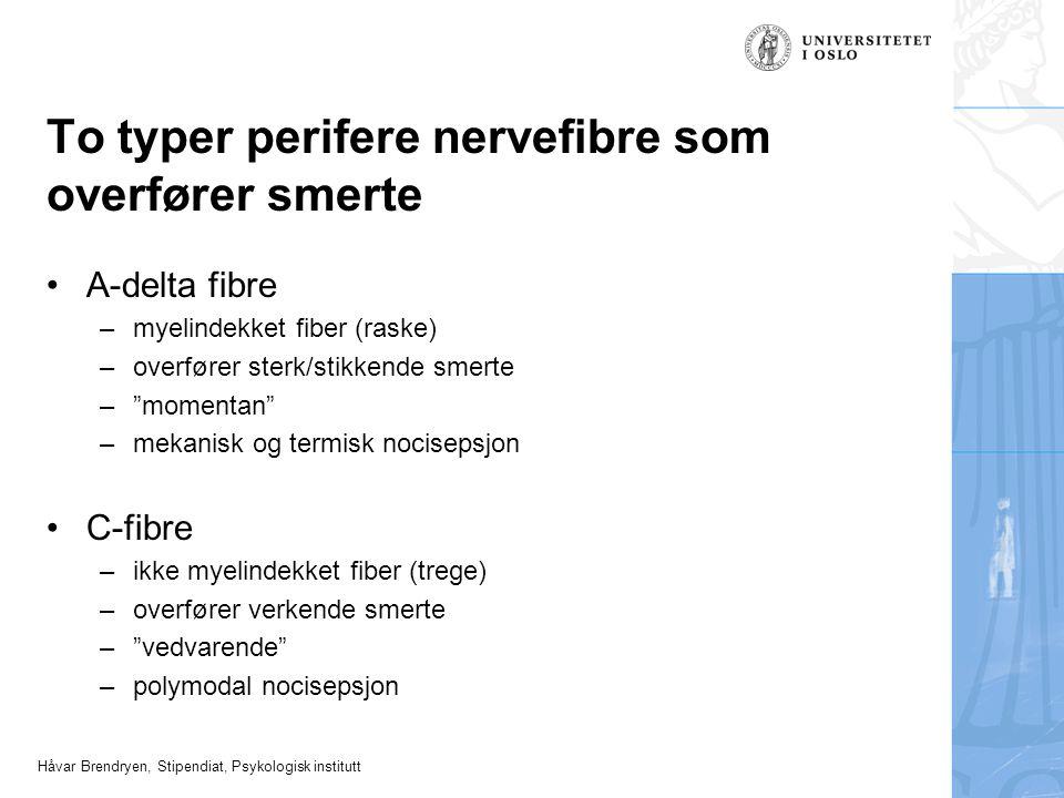 To typer perifere nervefibre som overfører smerte