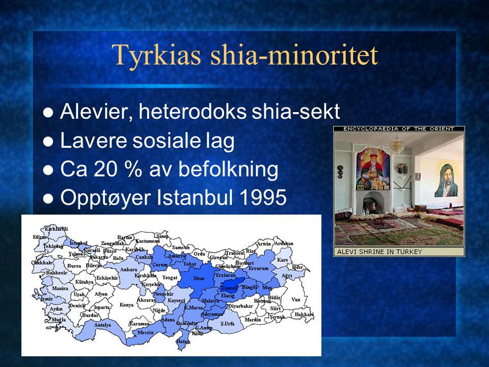 Tyrkias shia-minoritet