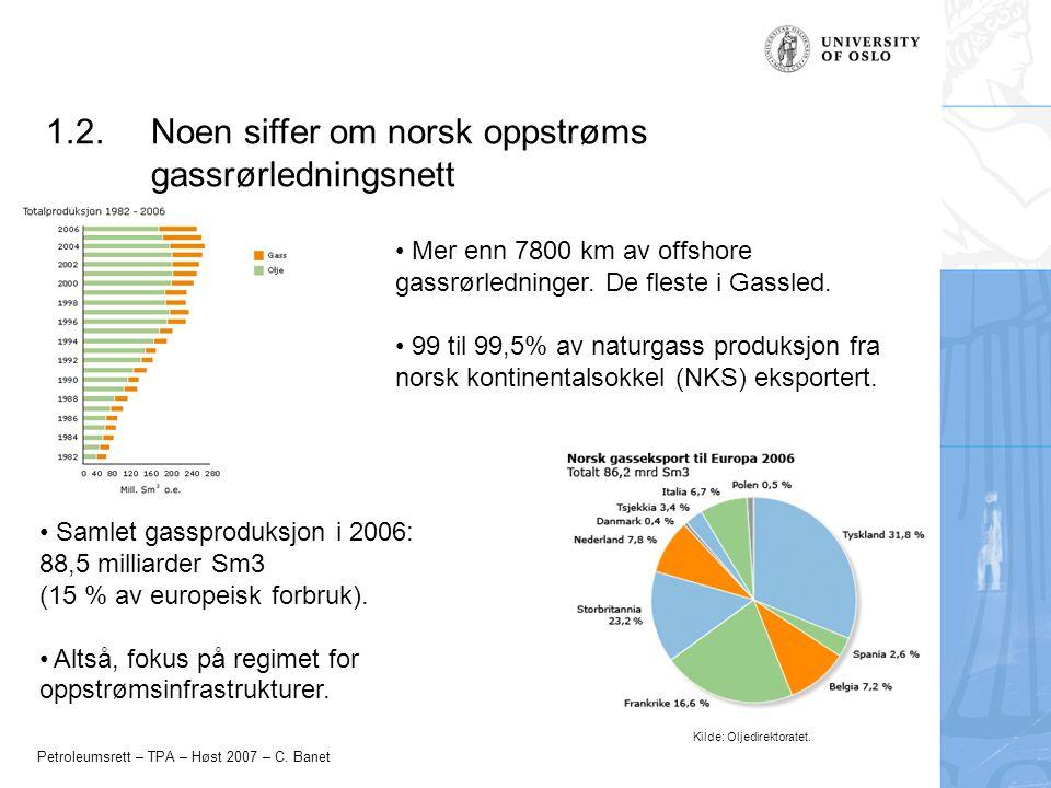 1.2. Noen siffer om norsk oppstrøms gassrørledningsnett