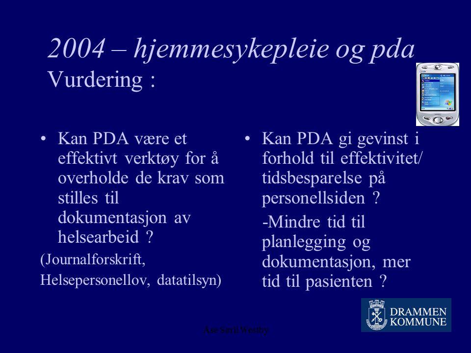2004 – hjemmesykepleie og pda Vurdering :