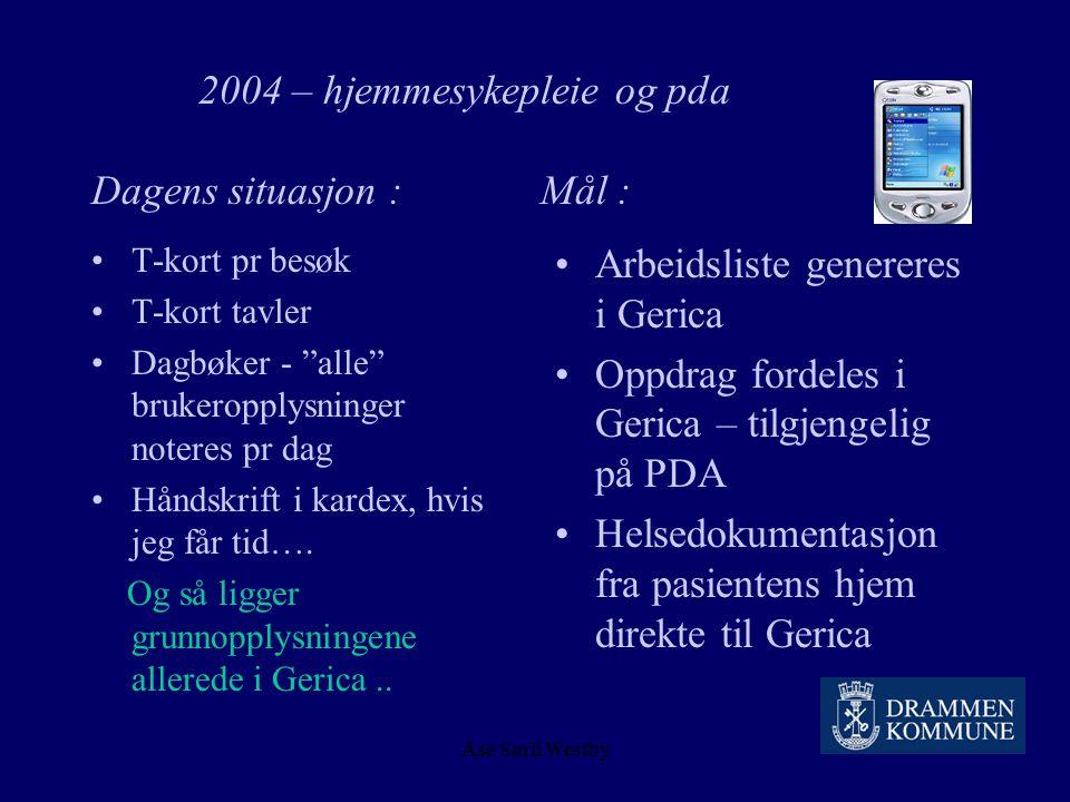 2004 – hjemmesykepleie og pda Dagens situasjon : Mål :