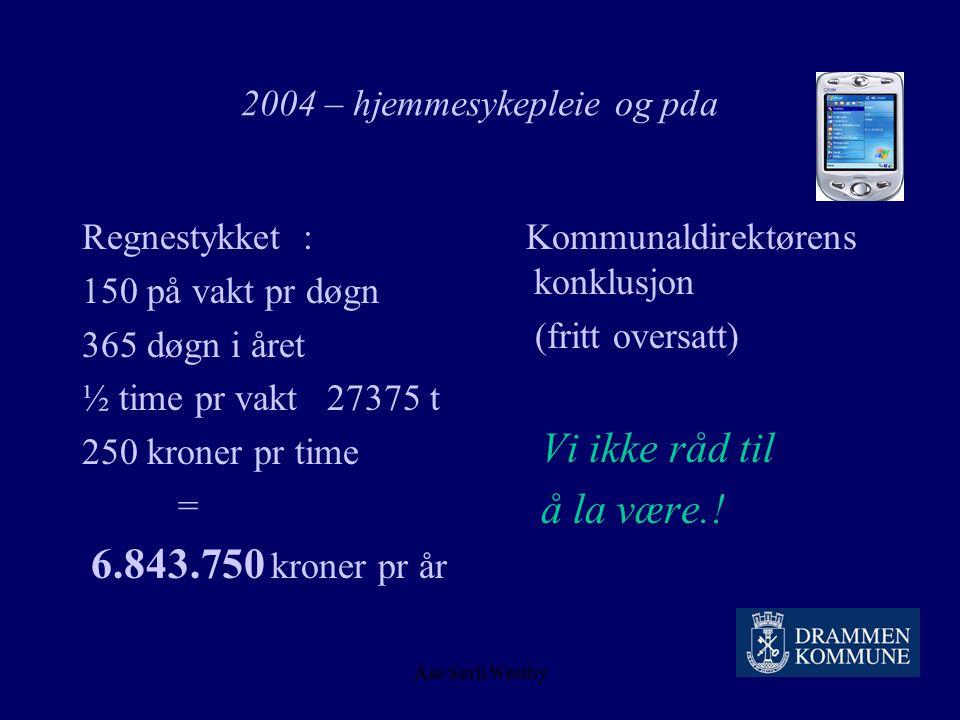 2004 – hjemmesykepleie og pda