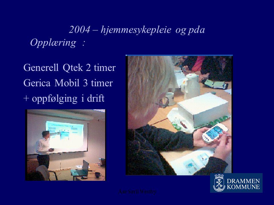 2004 – hjemmesykepleie og pda Opplæring :