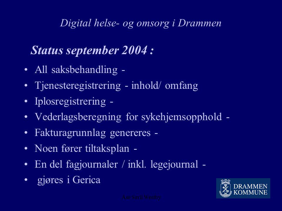 Digital helse- og omsorg i Drammen Status september 2004 :