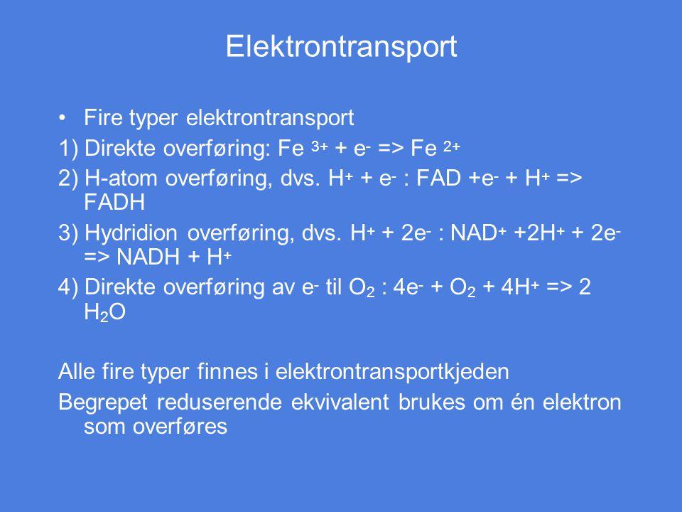 Elektrontransport Fire typer elektrontransport