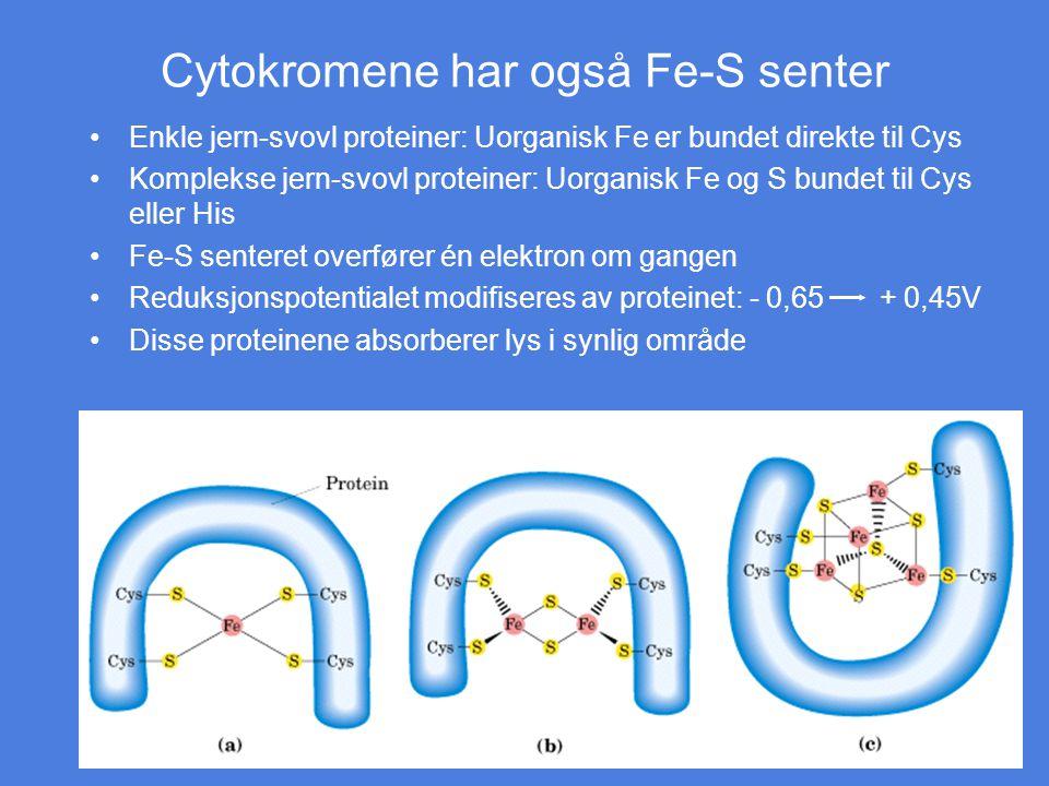 Cytokromene har også Fe-S senter