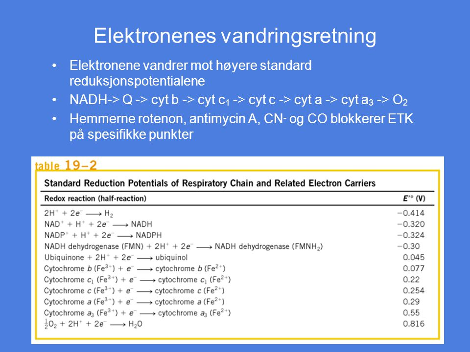 Elektronenes vandringsretning