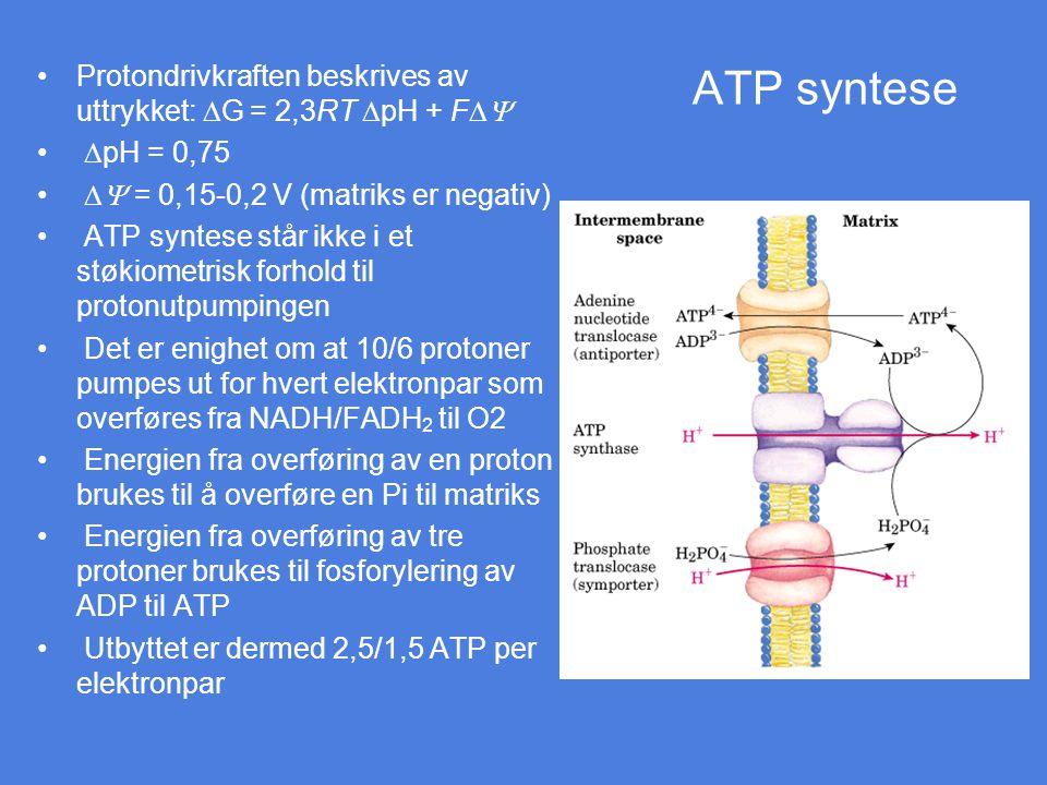ATP syntese Protondrivkraften beskrives av uttrykket: DG = 2,3RT DpH + FDY. DpH = 0,75. DY = 0,15-0,2 V (matriks er negativ)