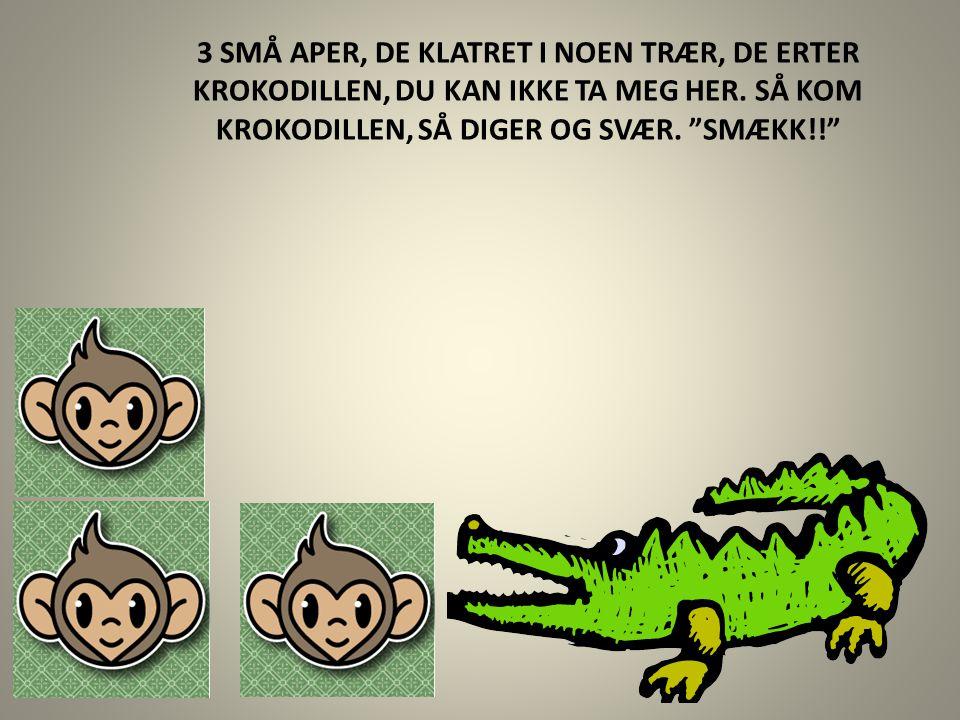 3 SMÅ APER, DE KLATRET I NOEN TRÆR, DE ERTER KROKODILLEN, DU KAN IKKE TA MEG HER.