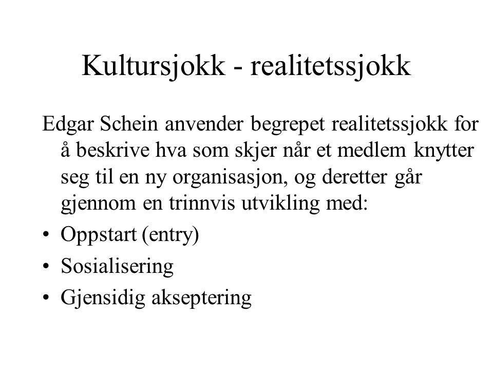 Kultursjokk - realitetssjokk