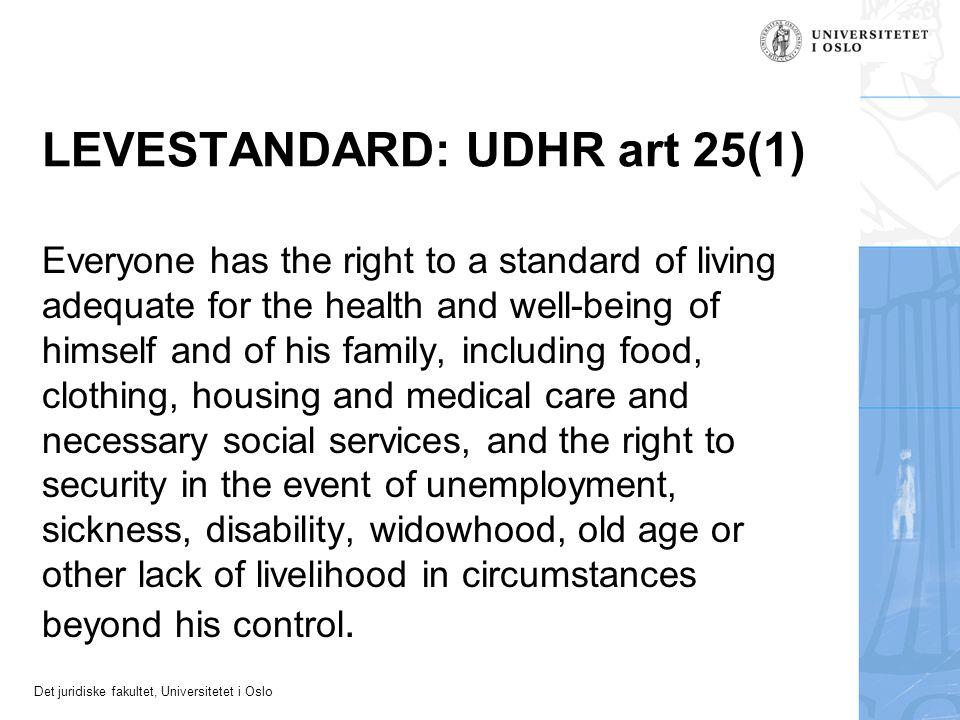 LEVESTANDARD: UDHR art 25(1)