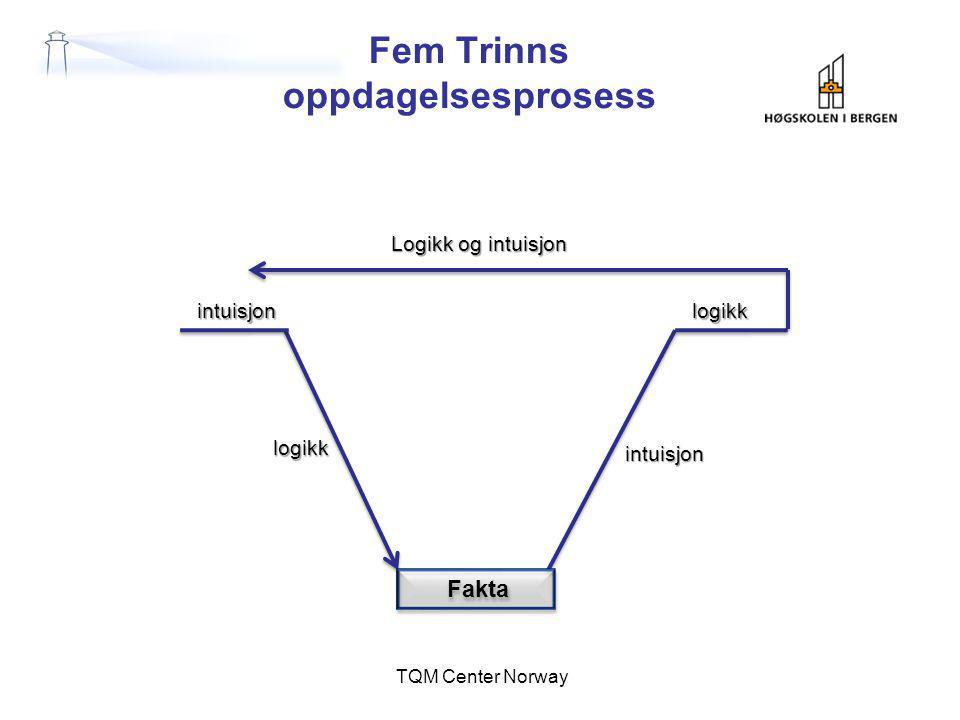 Fem Trinns oppdagelsesprosess