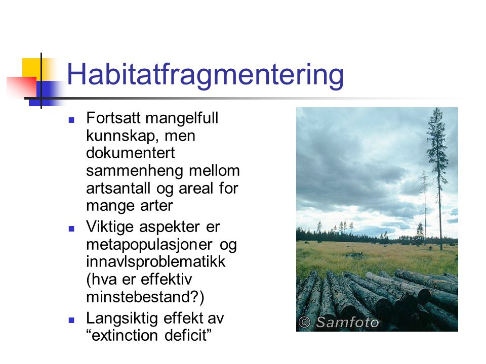 Habitatfragmentering