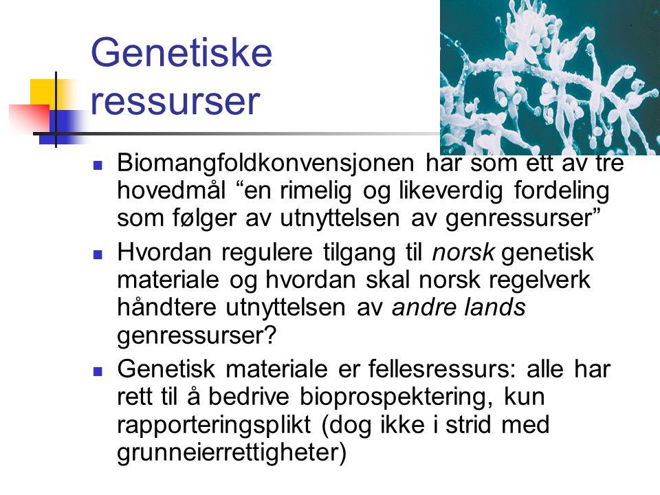 Genetiske ressurser