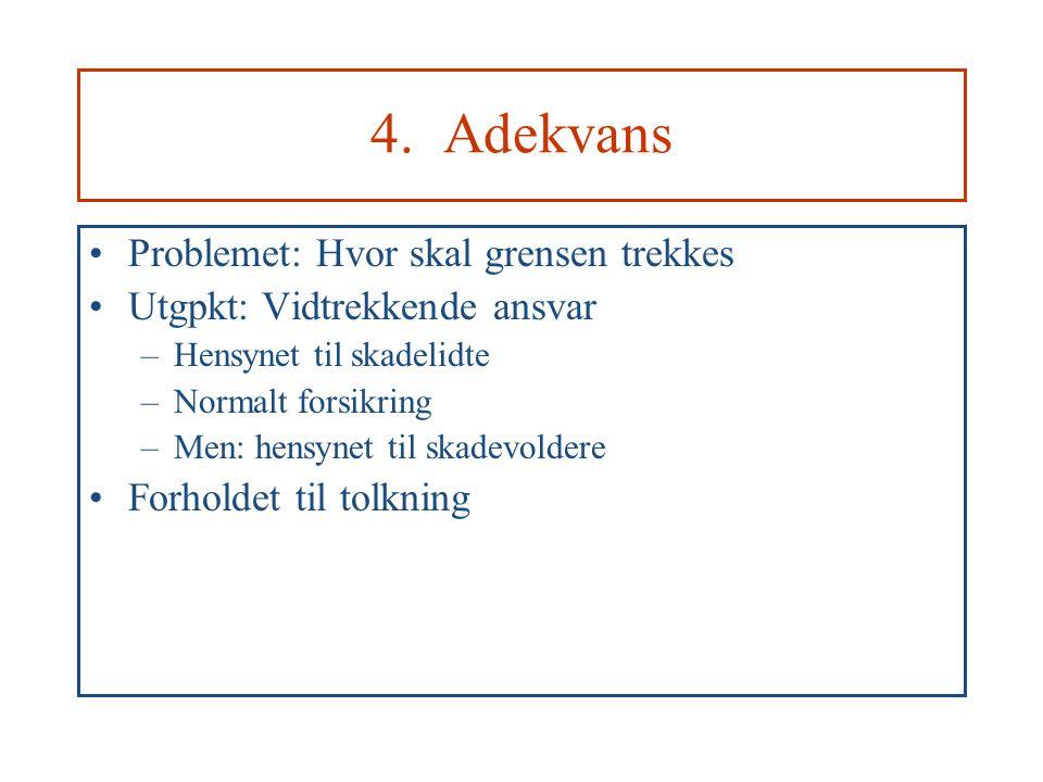 4. Adekvans Problemet: Hvor skal grensen trekkes