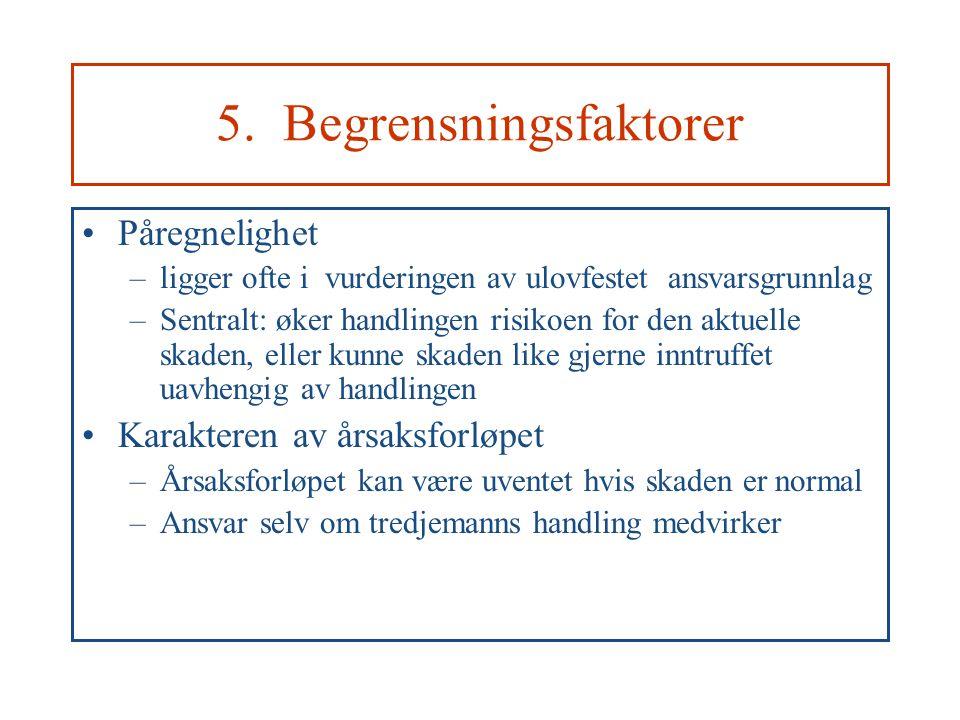 5. Begrensningsfaktorer