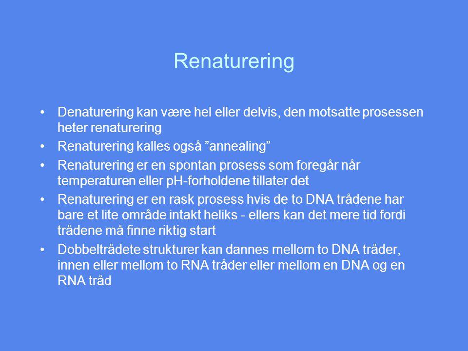 Renaturering Denaturering kan være hel eller delvis, den motsatte prosessen heter renaturering. Renaturering kalles også annealing