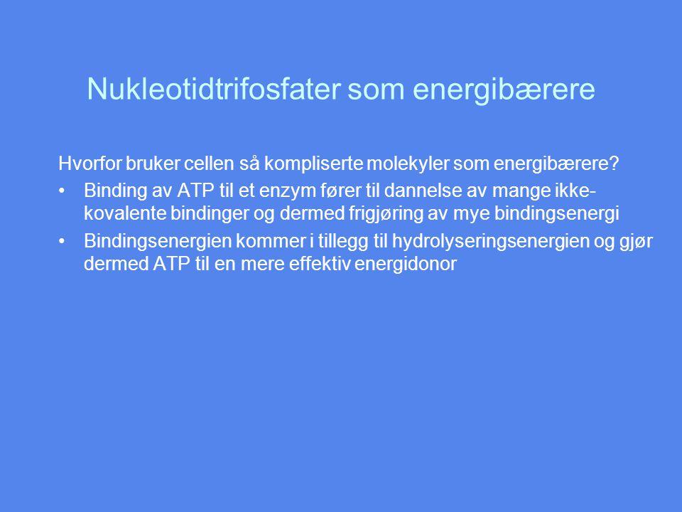 Nukleotidtrifosfater som energibærere