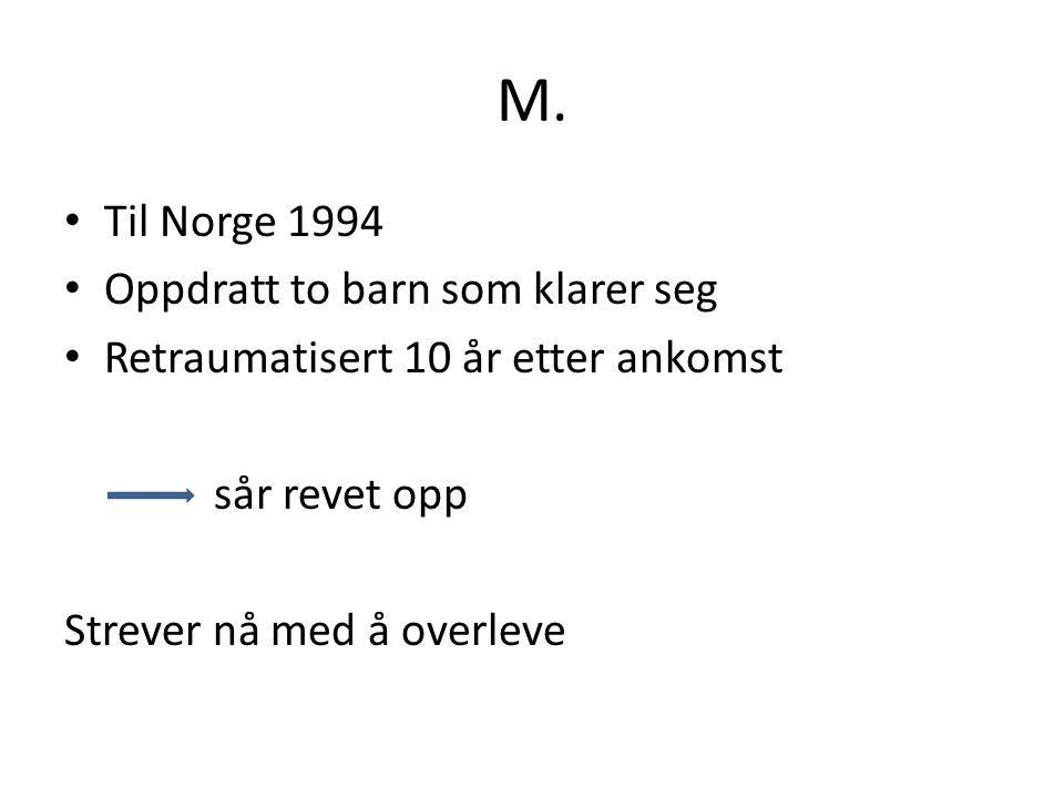 M. Til Norge 1994 Oppdratt to barn som klarer seg