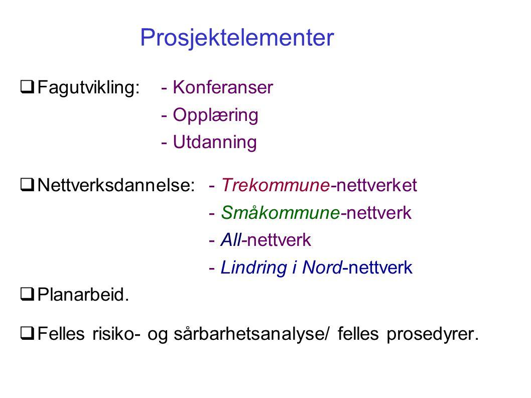 Prosjektelementer Fagutvikling: - Konferanser - Opplæring - Utdanning