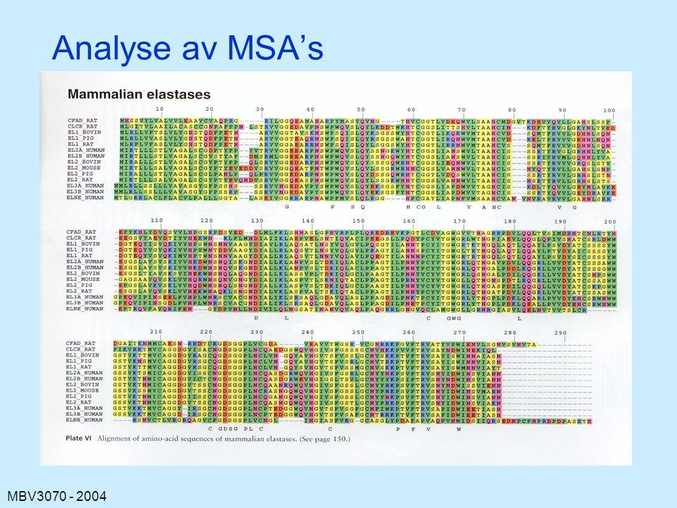 Analyse av MSA's