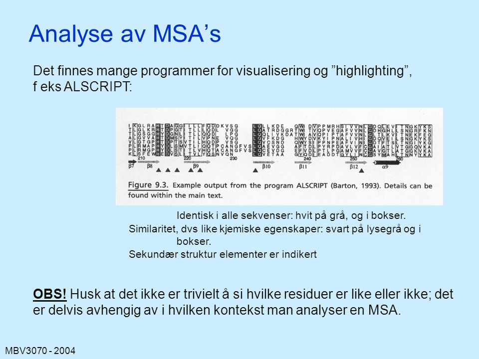 Analyse av MSA's Det finnes mange programmer for visualisering og highlighting , f eks ALSCRIPT: