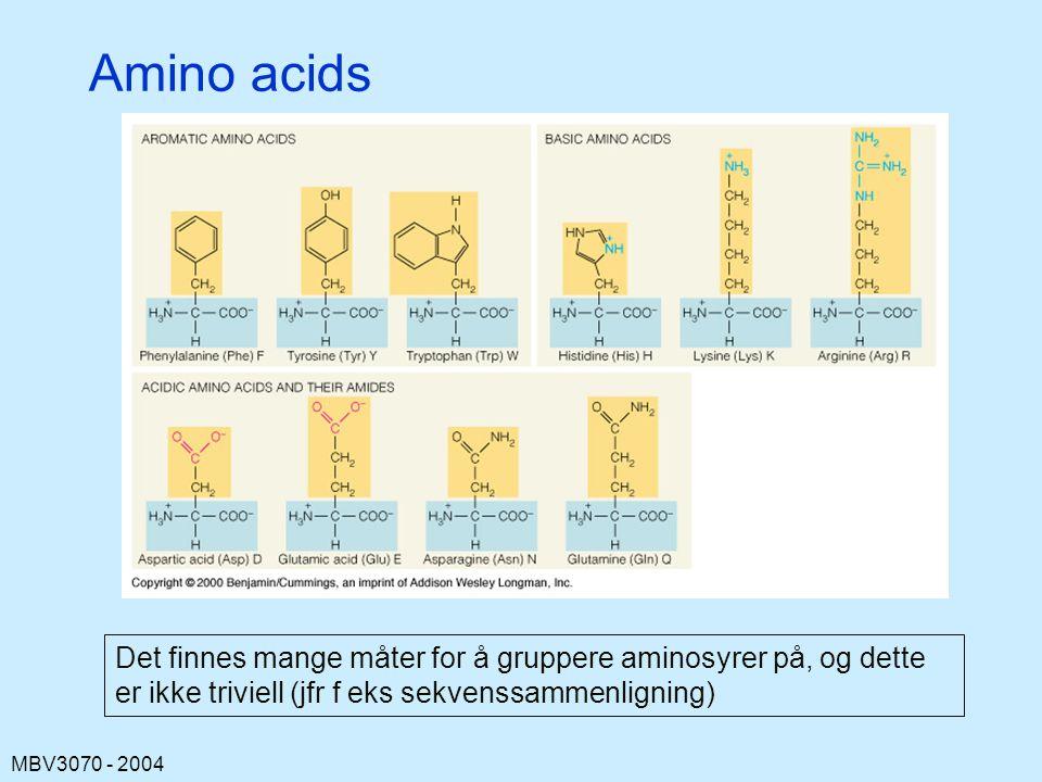 Amino acids Det finnes mange måter for å gruppere aminosyrer på, og dette er ikke triviell (jfr f eks sekvenssammenligning)