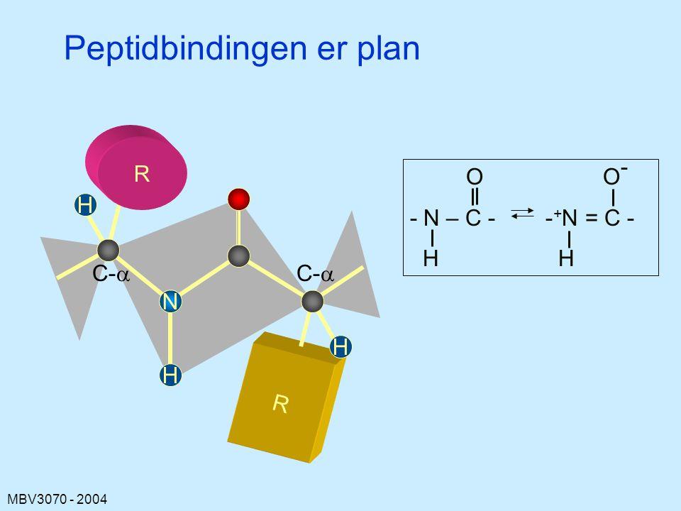 Peptidbindingen er plan