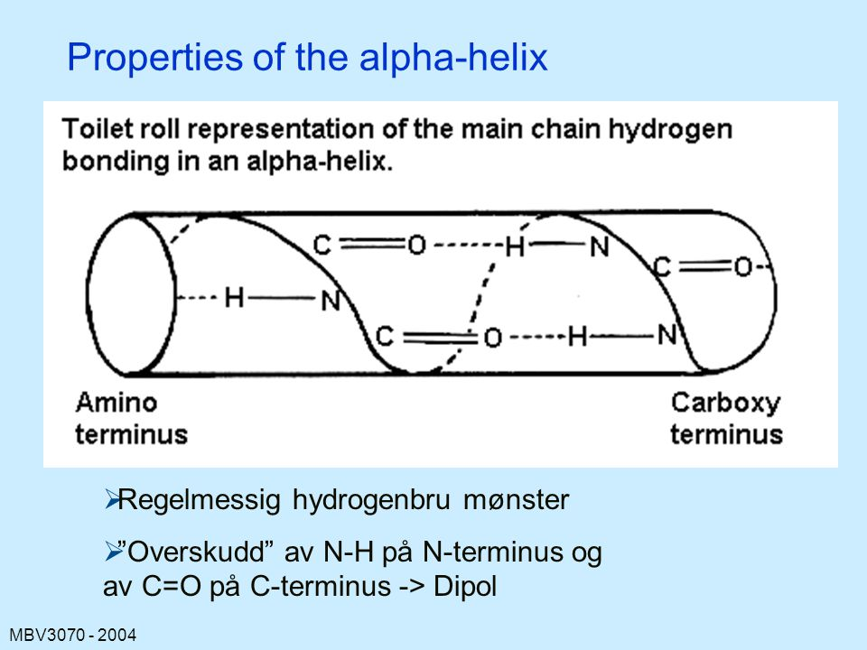 Properties of the alpha-helix