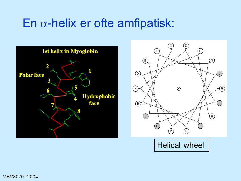En a-helix er ofte amfipatisk: