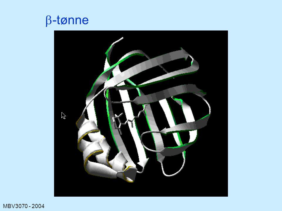 b-tønne Cellulært retinolbindende protein