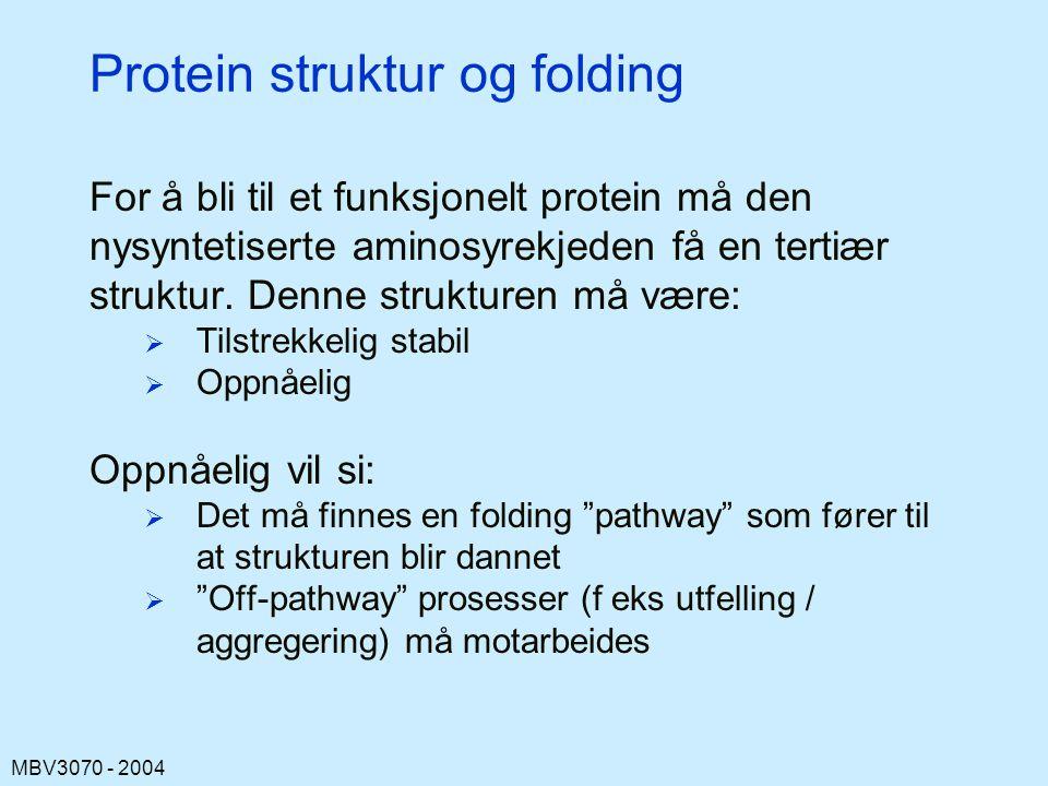 Protein struktur og folding