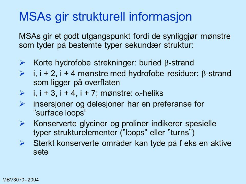 MSAs gir strukturell informasjon