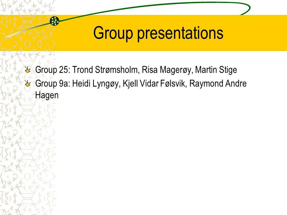 Group presentations Group 25: Trond Strømsholm, Risa Magerøy, Martin Stige.