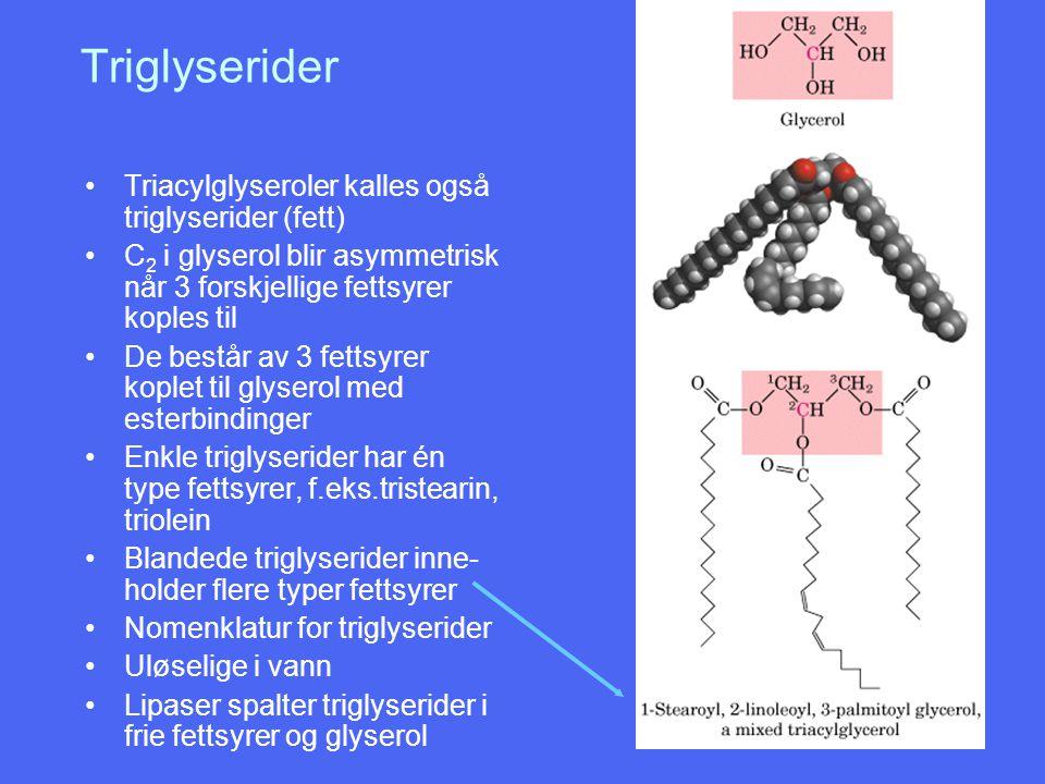 Triglyserider Triacylglyseroler kalles også triglyserider (fett)