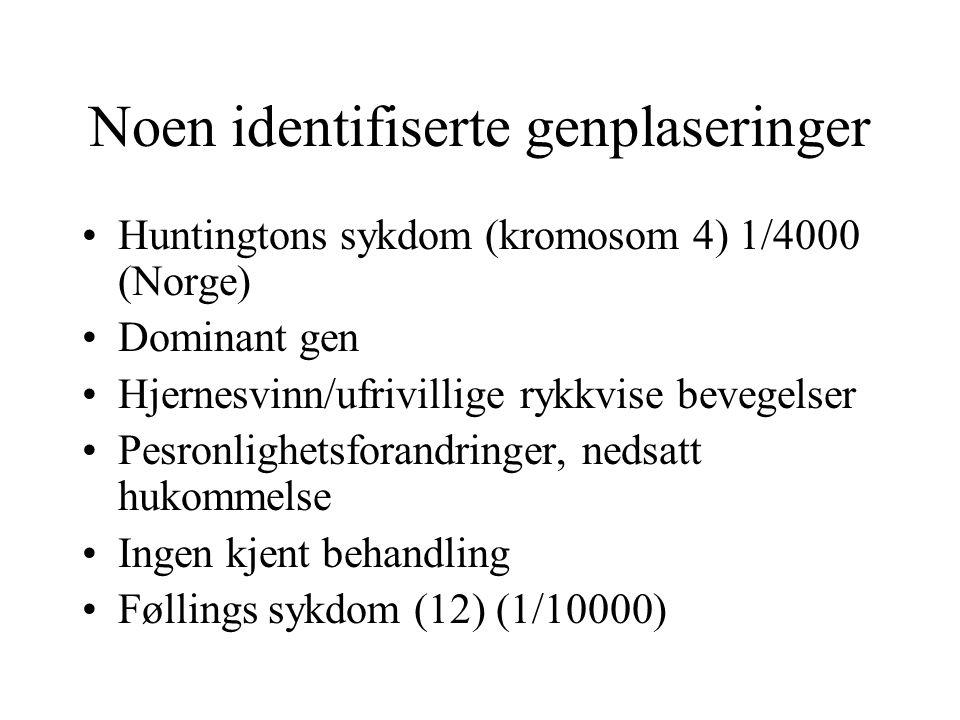 Noen identifiserte genplaseringer