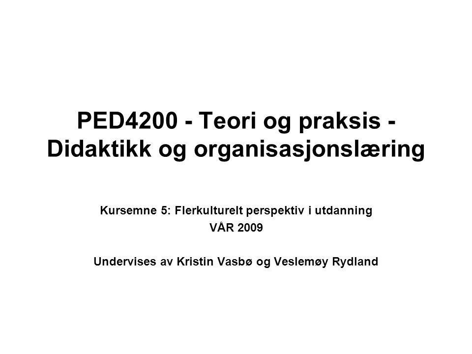 PED4200 - Teori og praksis - Didaktikk og organisasjonslæring