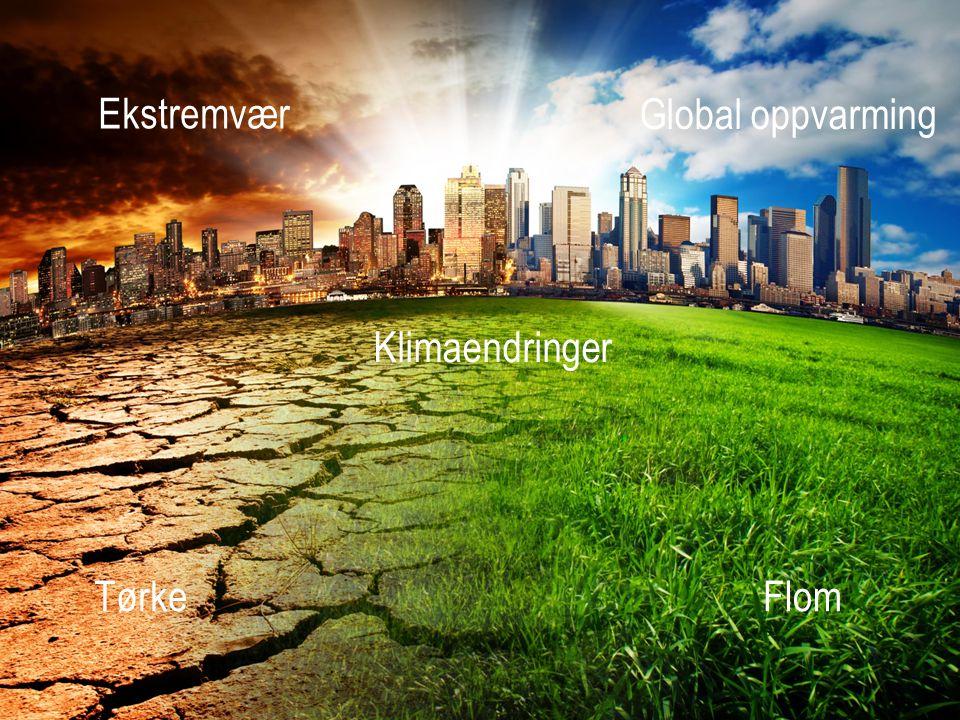 Ekstremvær Global oppvarming Klimaendringer Tørke Flom