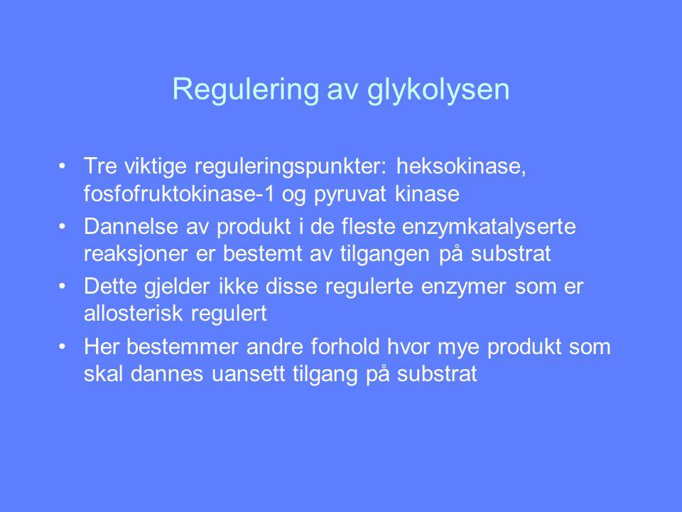 Regulering av glykolysen