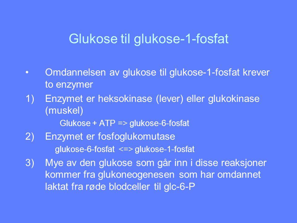 Glukose til glukose-1-fosfat