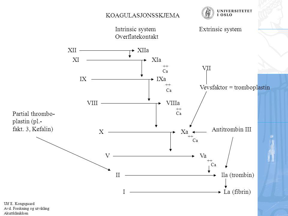 Vevsfaktor = tromboplastin
