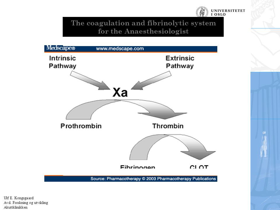 The coagulation and fibrinolytic system for the Anaesthesiologist