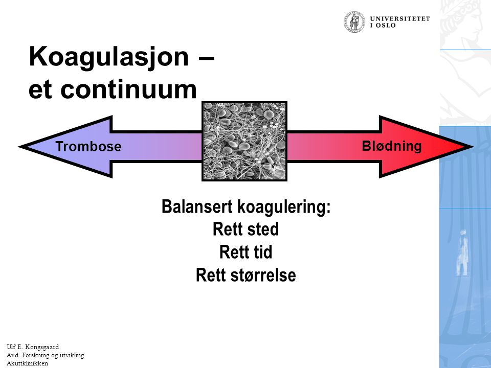 Koagulasjon – et continuum
