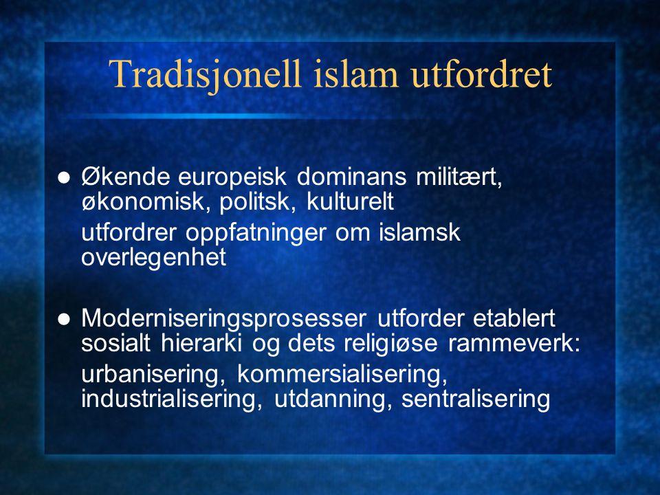 Tradisjonell islam utfordret